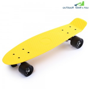 22 inch Four-wheel Street Long Mini Fish Skateboard